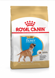 Royal Canin Boxer Puppy & Dog