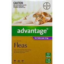 Bayer Advantage Cat   - 4kg and larger cat