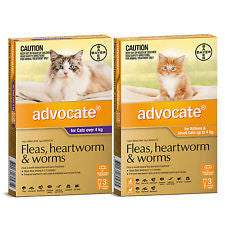 Bayer Advocate for Cats