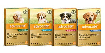 Advocate for Dogs- Bayer