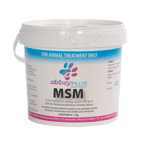 Abbey Labs MSM powder