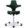 HÅG Capisco, Capisco chair, Best Capisco, Capisco ergonomic chair, Capisco office chair, HAG Blue Capisco, Black Capisco, Great capisco, The Capisco, Comfy Chair, Best office chair, Back pain chair, Free shipping chair, Capisco Australia