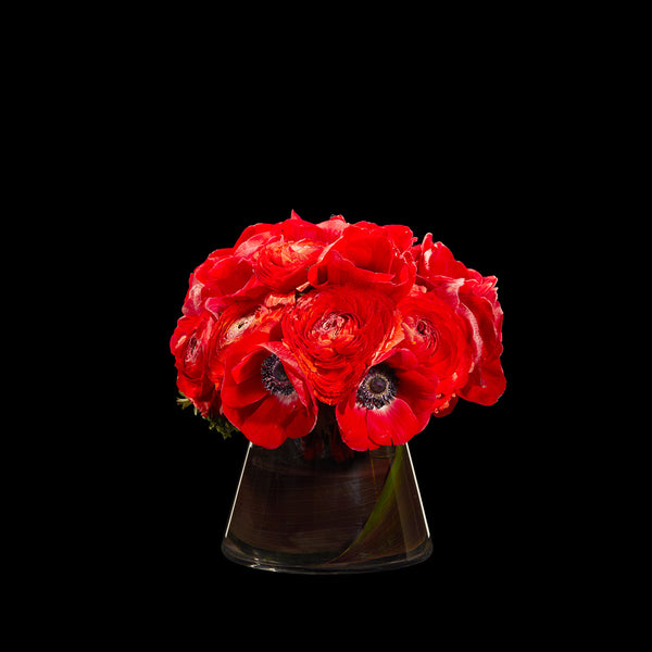 Bouche Rouge – Bloom Flowers