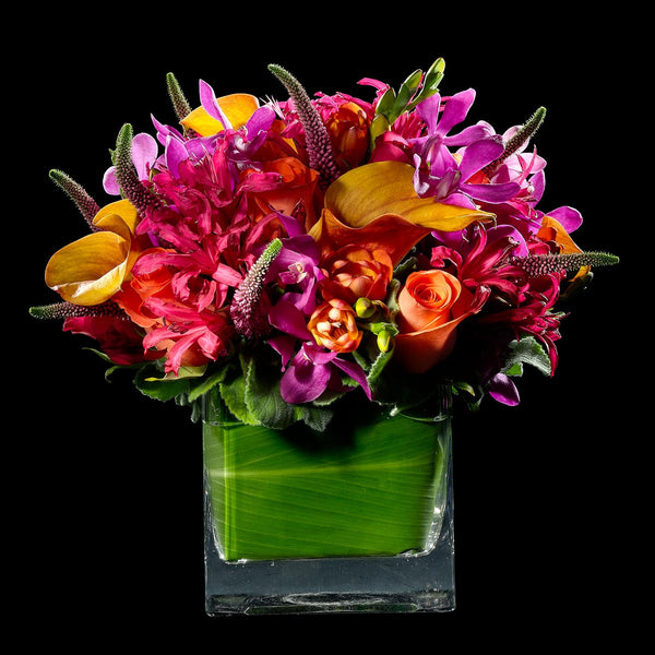Deep Orange and Hot Pink – Bloom Flowers