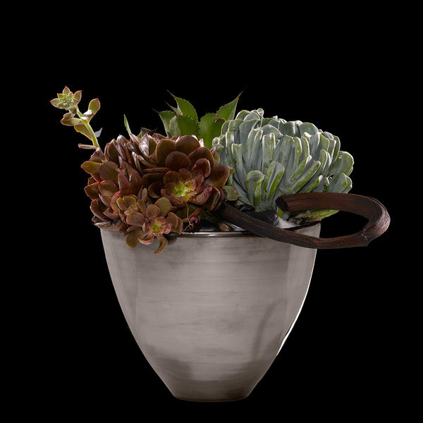 Succulent Jardin – Bloom Flowers