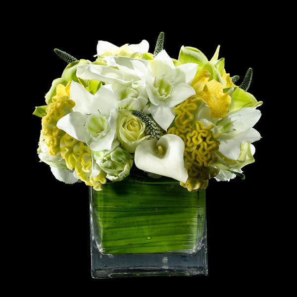 White and Lime – Bloom Flowers