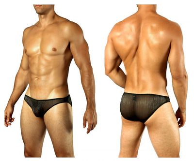 Shimmering Sheer Brief