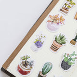 50 Watercolour Cactus & Succulents Mini Box Stickers - SweetpeaStore