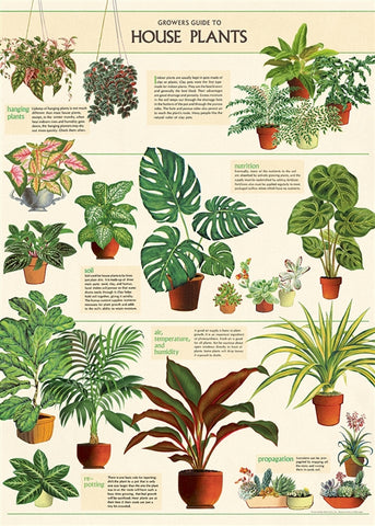 House Plants Chart Wrap Poster - Cavallini & Co - SweetpeaStore