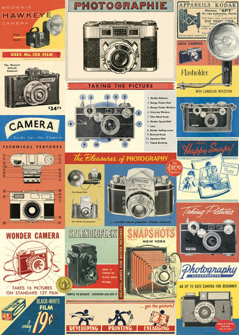 Vintage Camera Wrap Poster - Cavallini & Co - SweetpeaStore