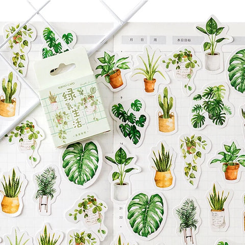 Set of 45 Pot Plants Succulents & Cacti Botanical Mini Box Stickers - SweetpeaStore