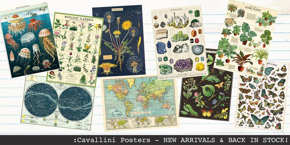 posters cavallini & Co Posters