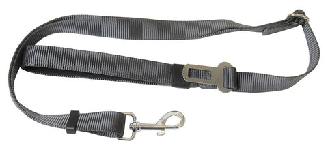 Dog Seatbelt Plus Padded Grip Leash (Dual Use)
