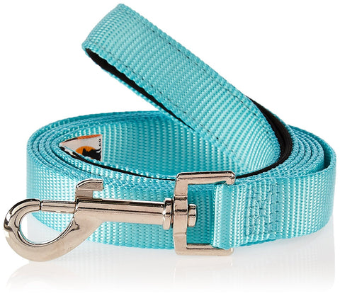 Robin Egg 5 foot Nylon Dog Leash with Durable Padded Grip