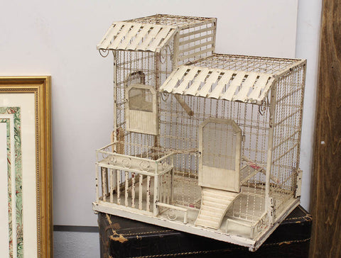 Wire Frame Bird Cage