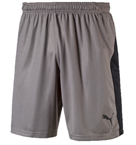 Liga Shorts Gray (Game)