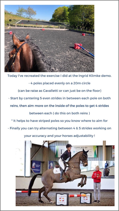 Chuffy Clarke's lockdown equestrian pole work exercise