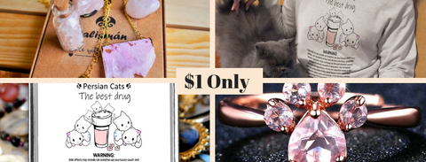 Surprise Talisman Gift Set For Single Persian Cat Moms