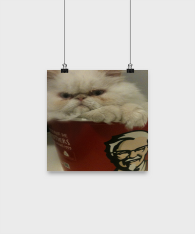 Funny Persian Cat Poster For Kitchen - Fun Christmas Gift For Her - Holiday Poster Gifts For Women - Christmas 2017 2018 Posters Of Funny Persian Cats, Poster, Gearbubble, FamilyTrophy.com - FamilyTrophy.com