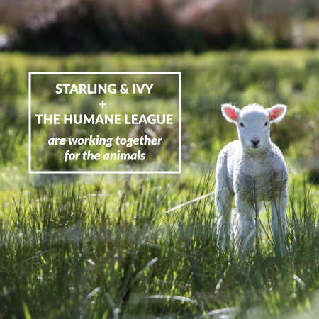 Announcing Our New Partner: The Humane League