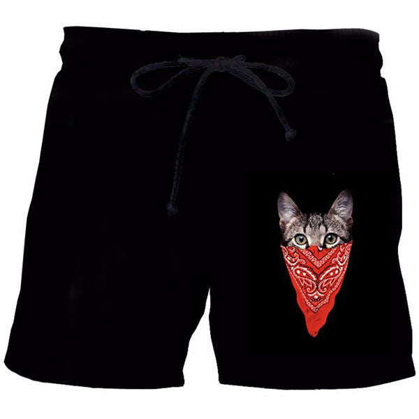 Black Cat Shorts
