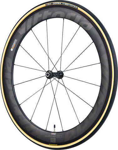 Vittoria Corsa G+ Tire: Folding Clincher - Black/Tan
