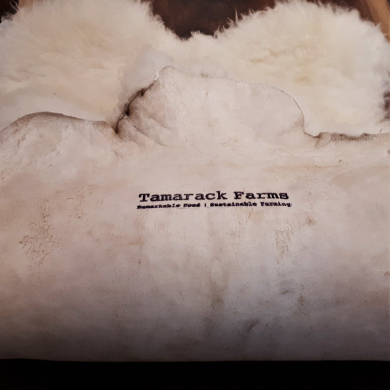 Shropshire Sheepskin from Tamarack Farms