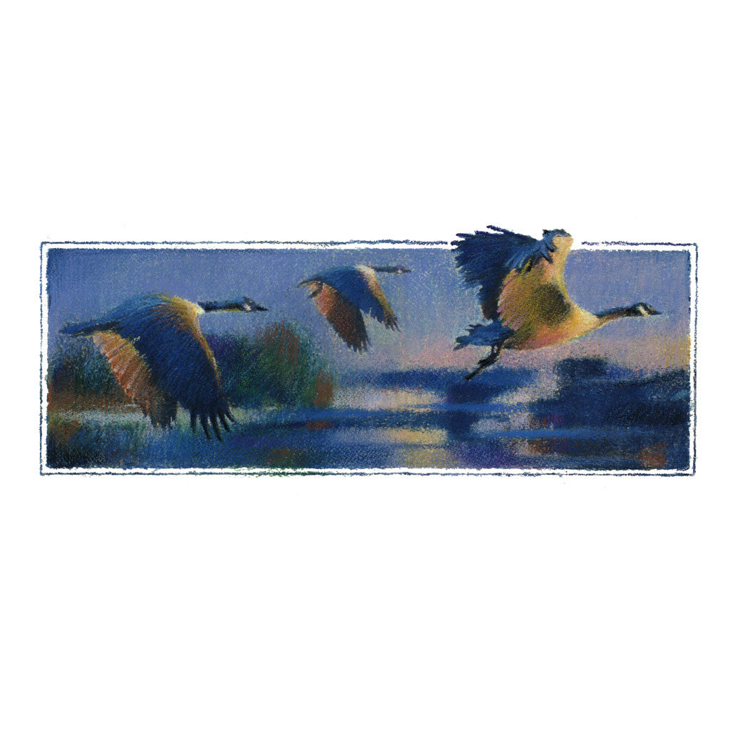 Watercolour and Oil Pastel Painting - Canada Geese in Flight