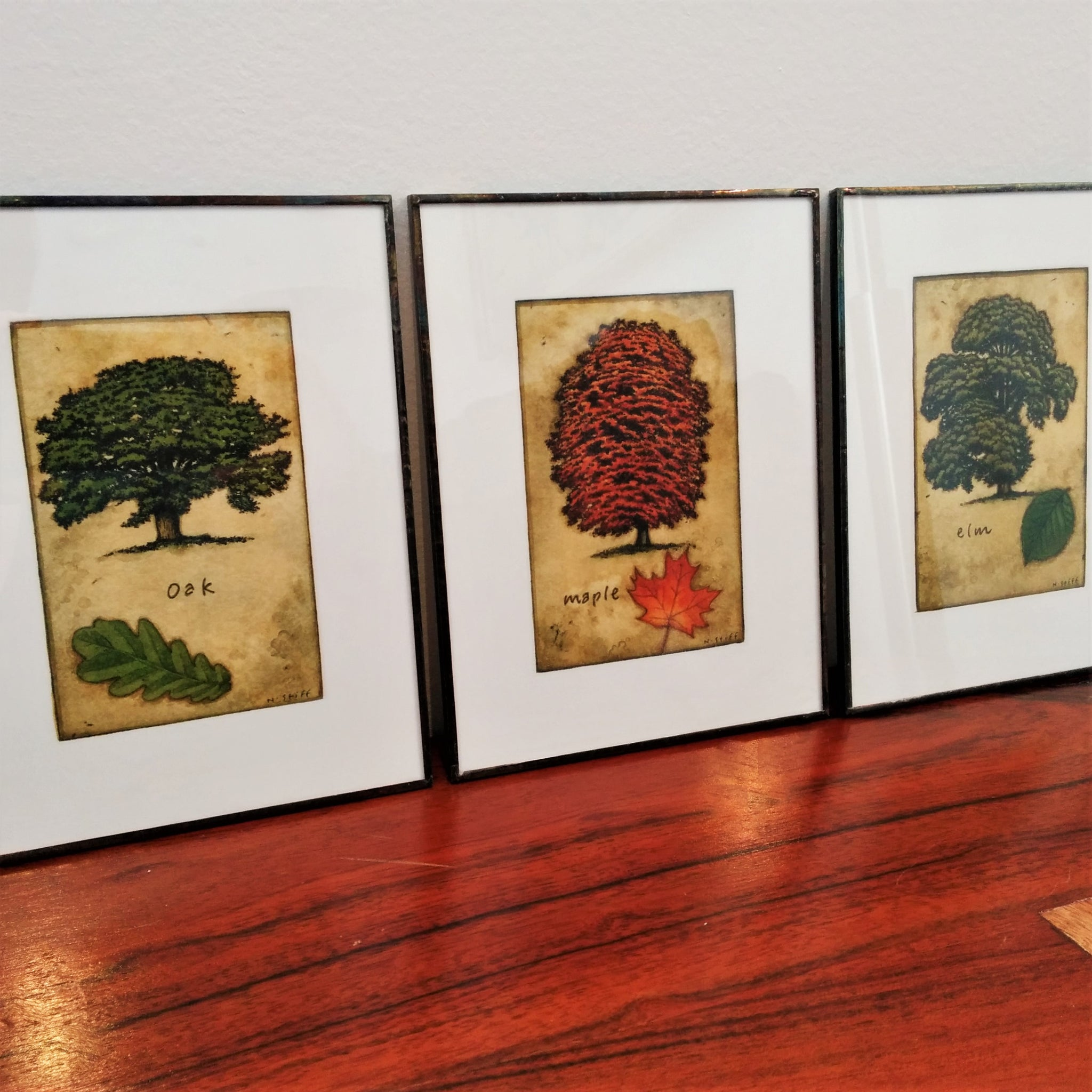 Set of three handprinted etchings of trees by Canadian Artist