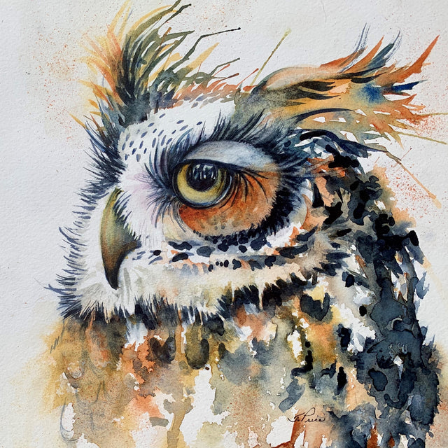 Framed Original Watercolour - WHOO GIVES A HOOT?
