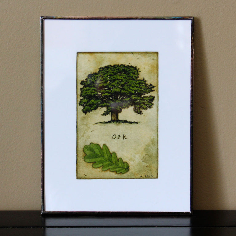 Canadian Tree Framed Print Set - Maple, Elm and Oak