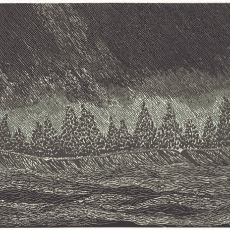 Limited Edition Reduction Engraving - SQUALL