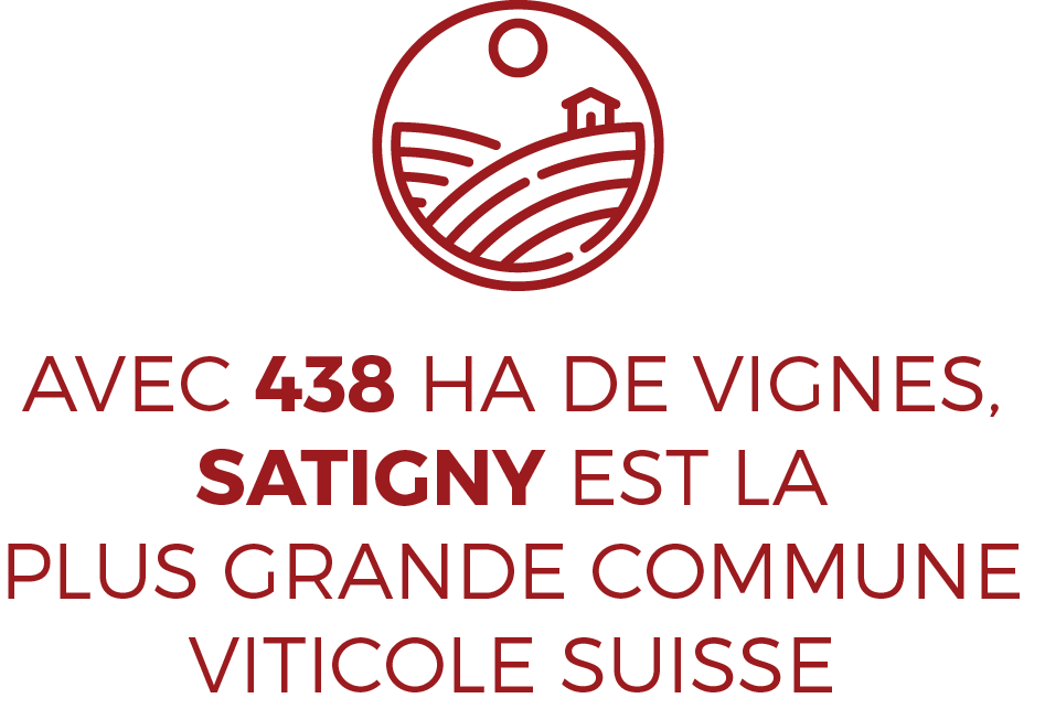 Satigny plus grande commune viticole suisse