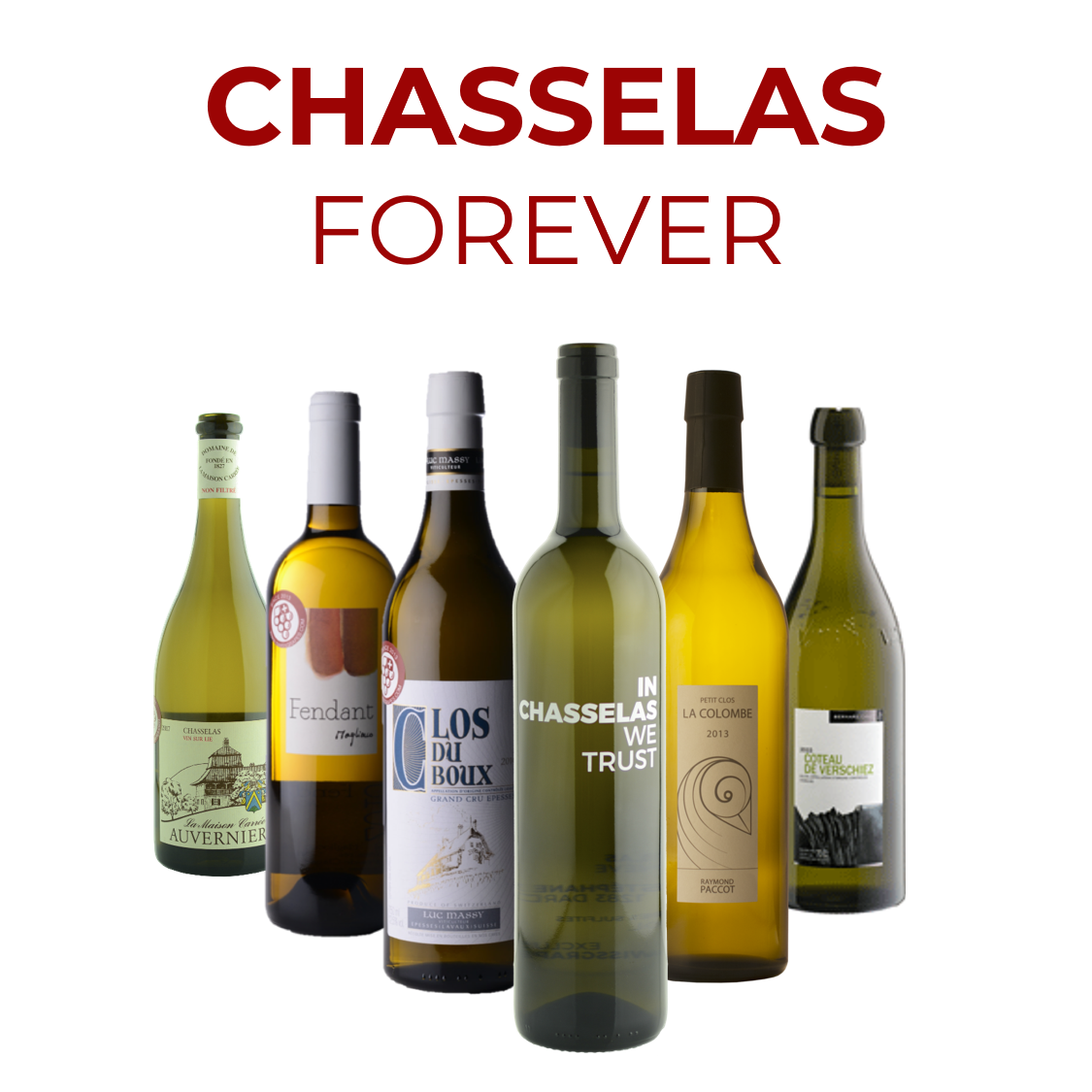 CHASSELAS FOREVER <br>6 BOUTEILLES