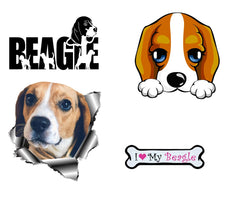 Beagle Dog  Iron On Transfers