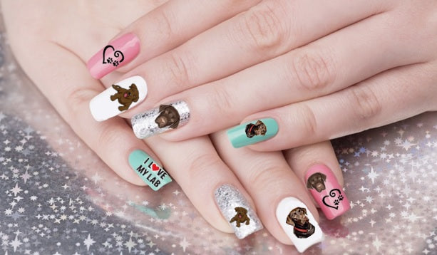 Chocolate Labrador - Retriever Nail Art