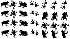 Frog Vinyl Stickers ( Multiple colours to choose from )