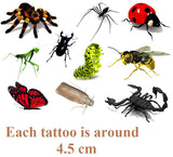 Insects 3d  Temporary Tattoos