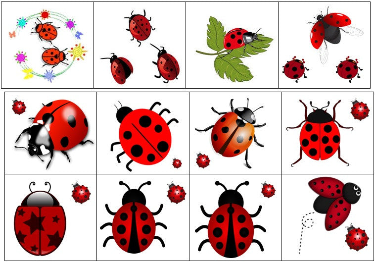 Ladybird Temporary Tattoos