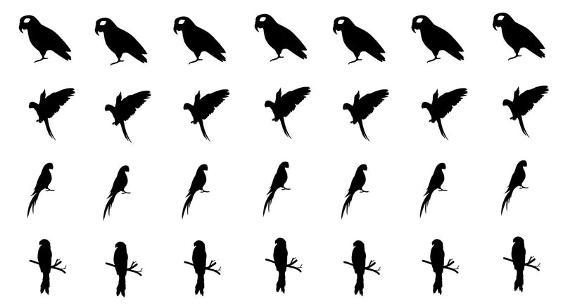 Parrot  Vinyl Stickers ( Multiple colours to choose from )