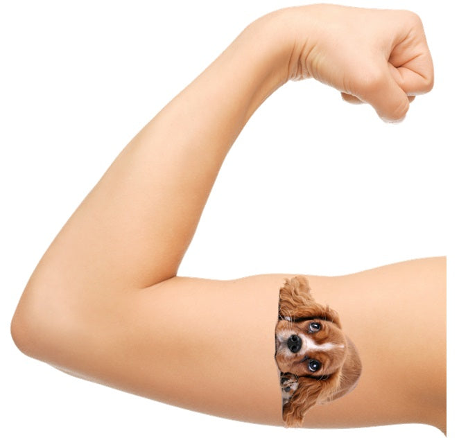 Spaniel Dog  Temporary Tattoos