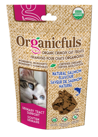 Salmon Urinary Tract Support Cat Treat Recipe