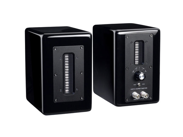 G3ST-D Super Tweeter System / pair
