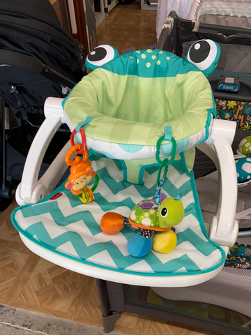 Fisher Price Sit Me Up, Chevron Frog