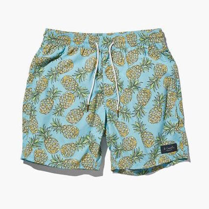 Barney Cools - Amphibious 17″ Blue Pineapple Shorts