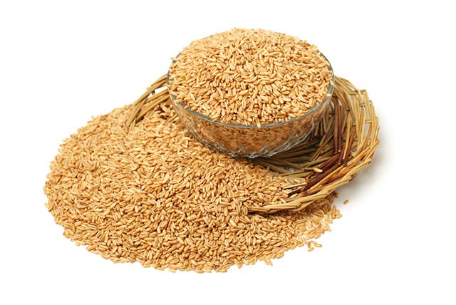 Ingredients - Avena Sativa – Oatmeal