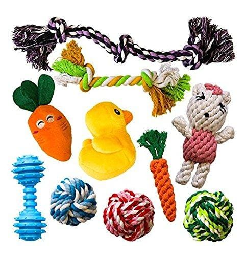 Chewing Ropes Squeaky Toys Carry Bag AMZpets 10 Most Popular Dog Toys for Small Dogs /& Puppies Plush Games Rope Toys Rubber Bone Variety Playing Set for Toss /& Tug Play. Balls