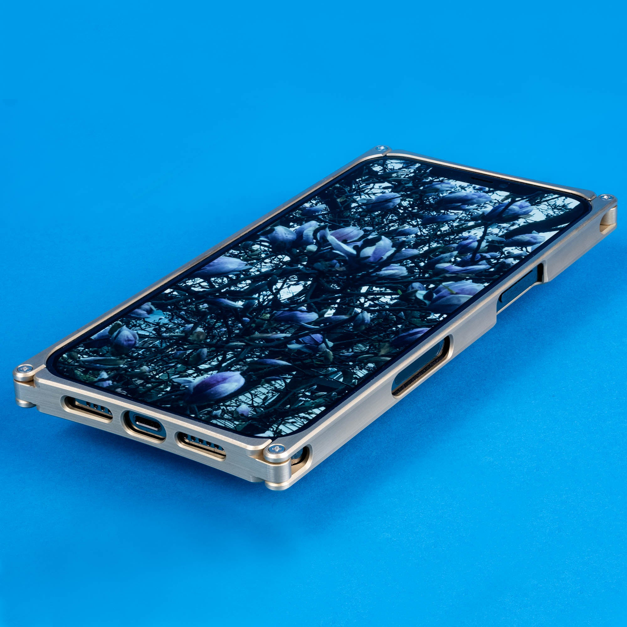iPhone 12 Pro Case, Brass Cage