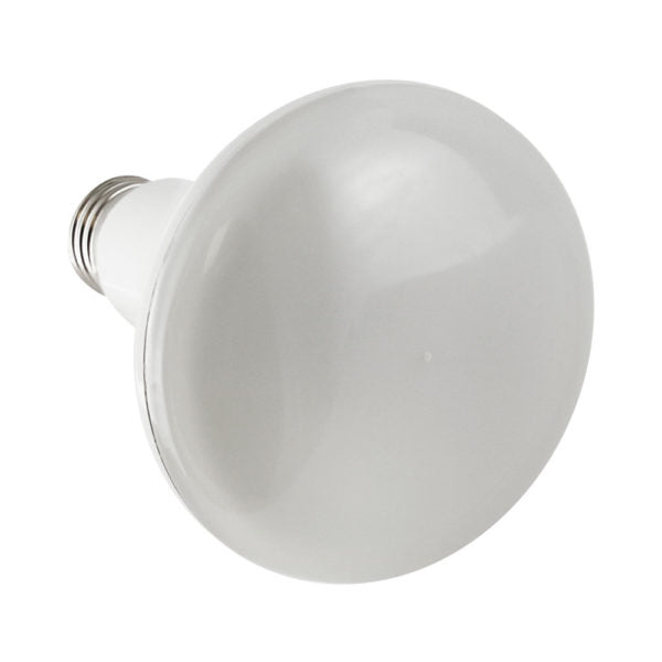 BR30 Indoor Decorative Lighting - Dimmable - 11W