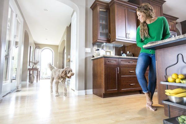 How to Fit Healthy Habits into Your Dog's Daily Routine